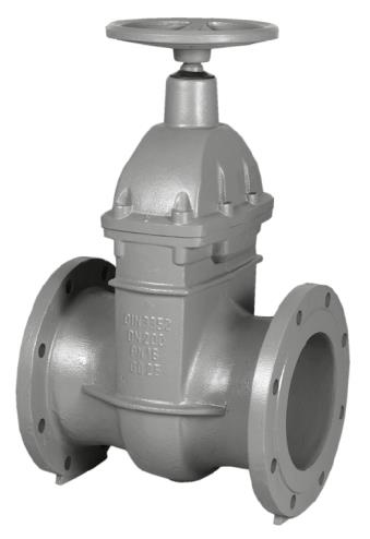 6.13-Cast iron gate valve, oval body