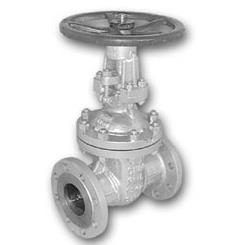 6.20-Cast steel gate valve, oval body